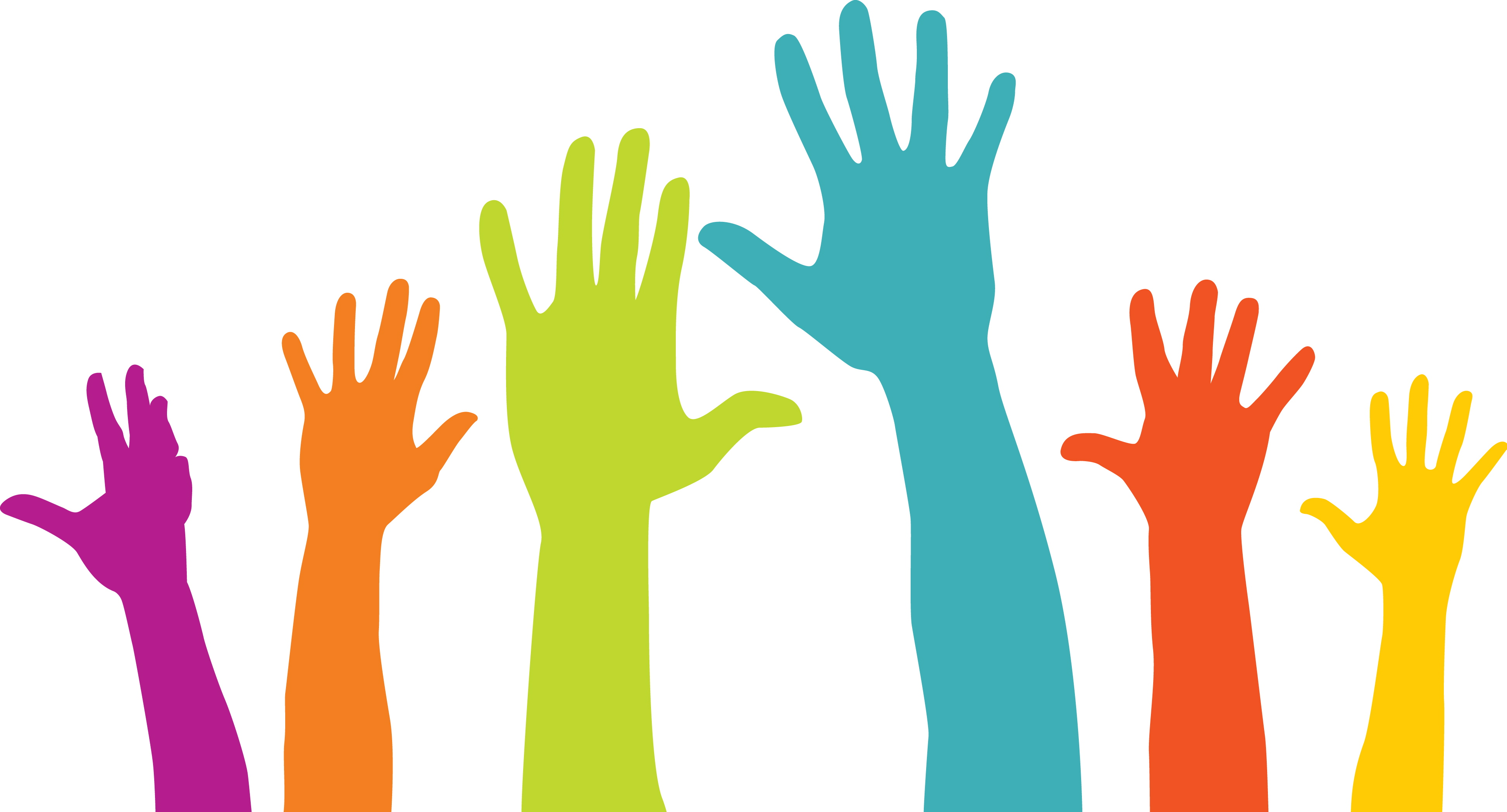 Local Volunteer Opportunities