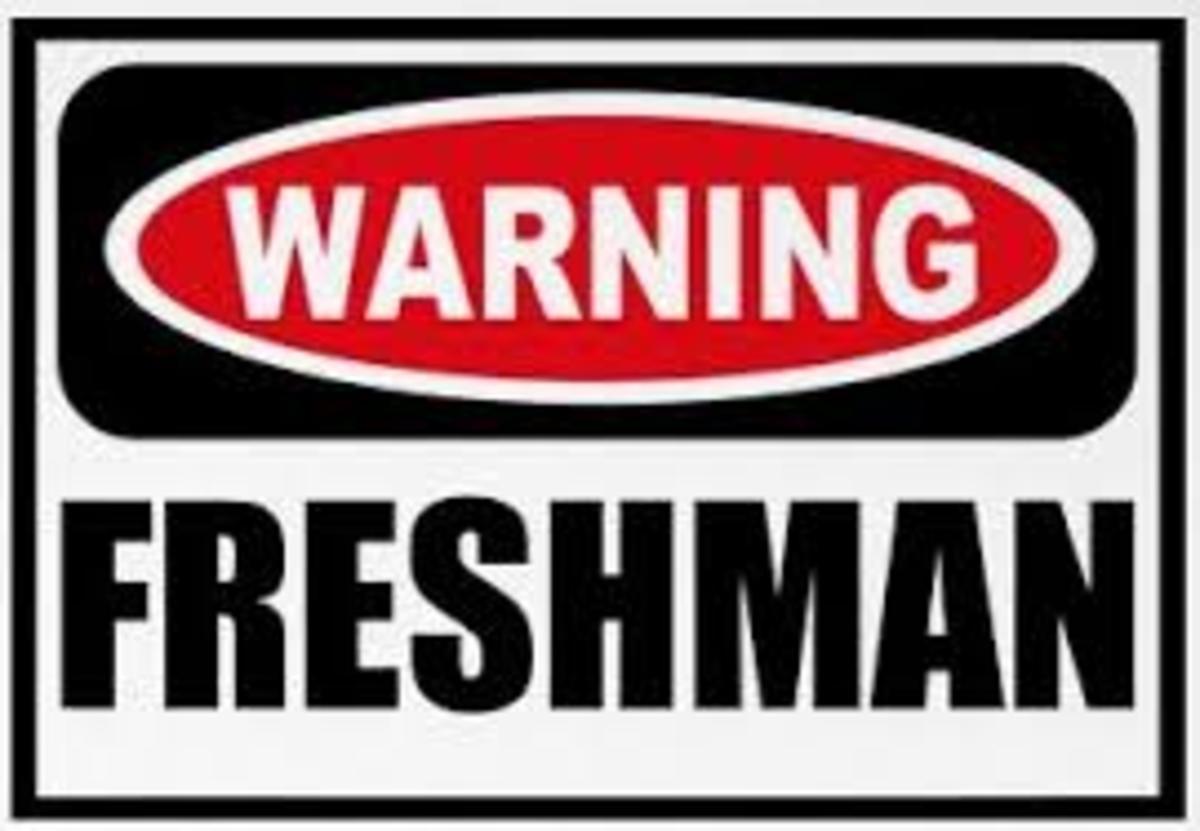 Freshman Year: A Review
