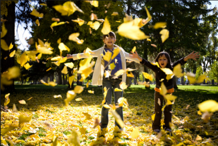 http://www.gettyimages.com/detail/photo/little-girls-playing-in-the-leaves-royalty-free-image/136754684