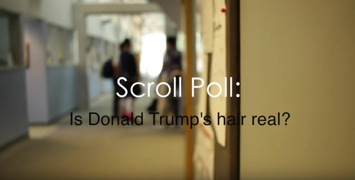 Video: Scroll Poll #8: Donald Trump's Hair