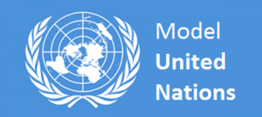 My+First+Model+UN+Experience