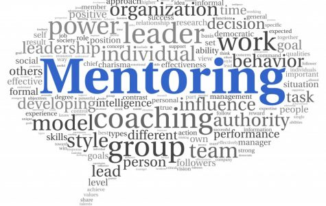 Peer Mentoring Review