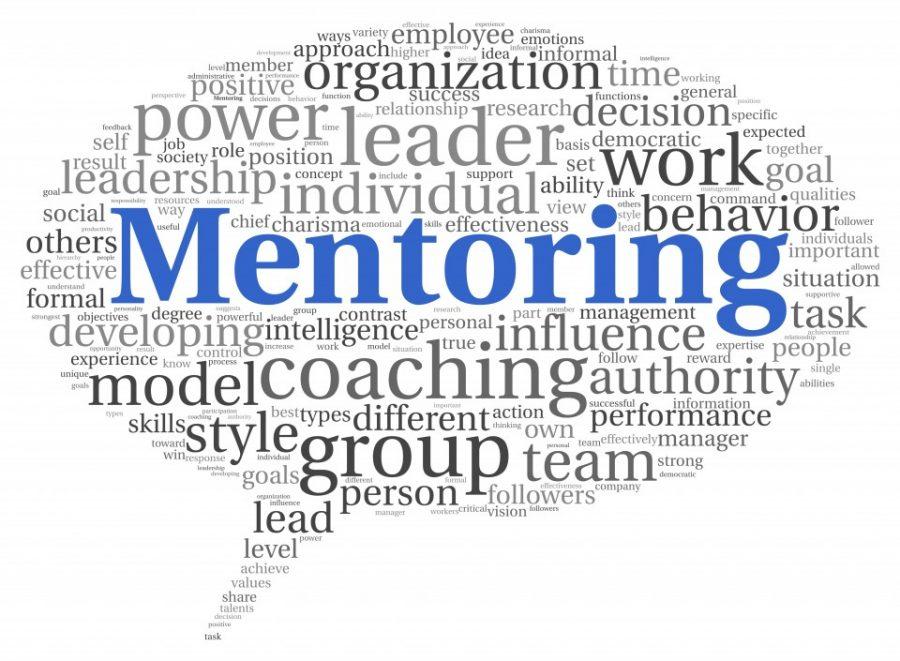 Peer Mentoring Review