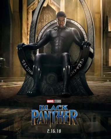 Black Panther (Non-Spoiler Review)