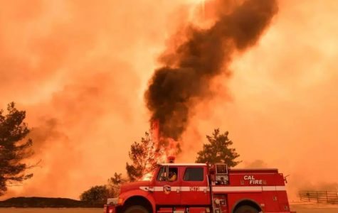 California Fires Deadliest in State History