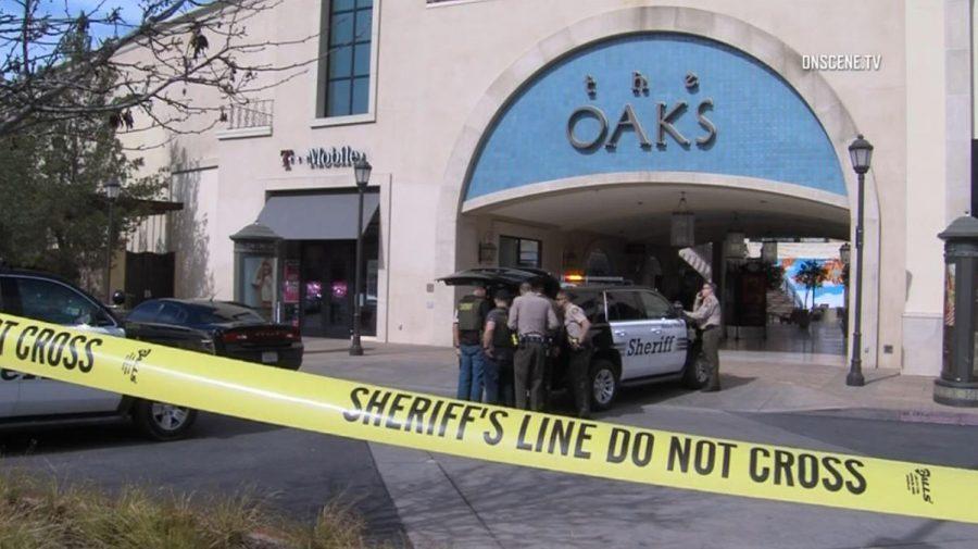 The Thousand Oaks Shooting