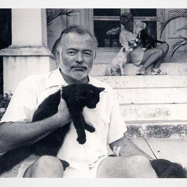 Exploring Hemingway's Legacy in 2021